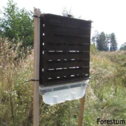 kerrospyydys kirjanpainaja metsäferomonit biotus oy metsätuholaiset